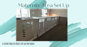 Setting Up your maternity area